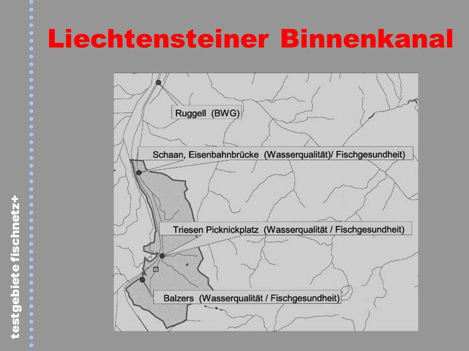 Liechtensteiner Binnenkanal