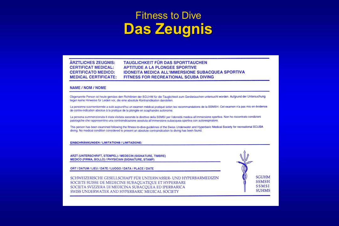 Fitness to Dive Das Zeugnis