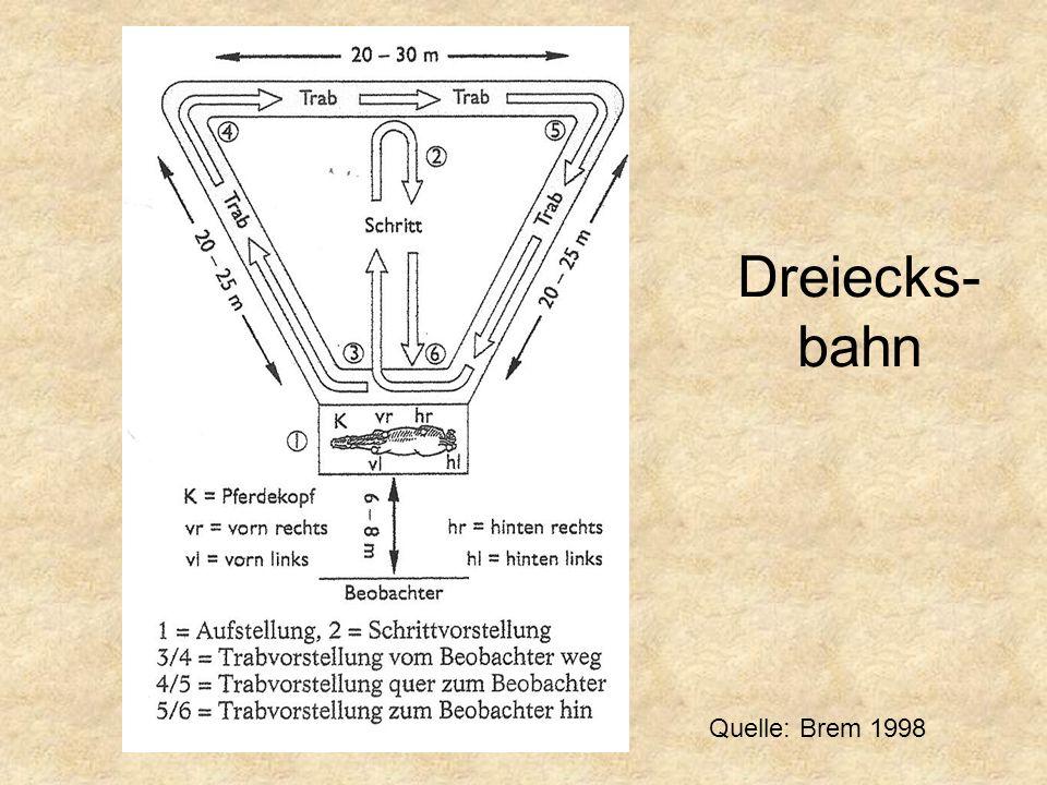 Dreiecks-bahn Quelle: Brem 1998