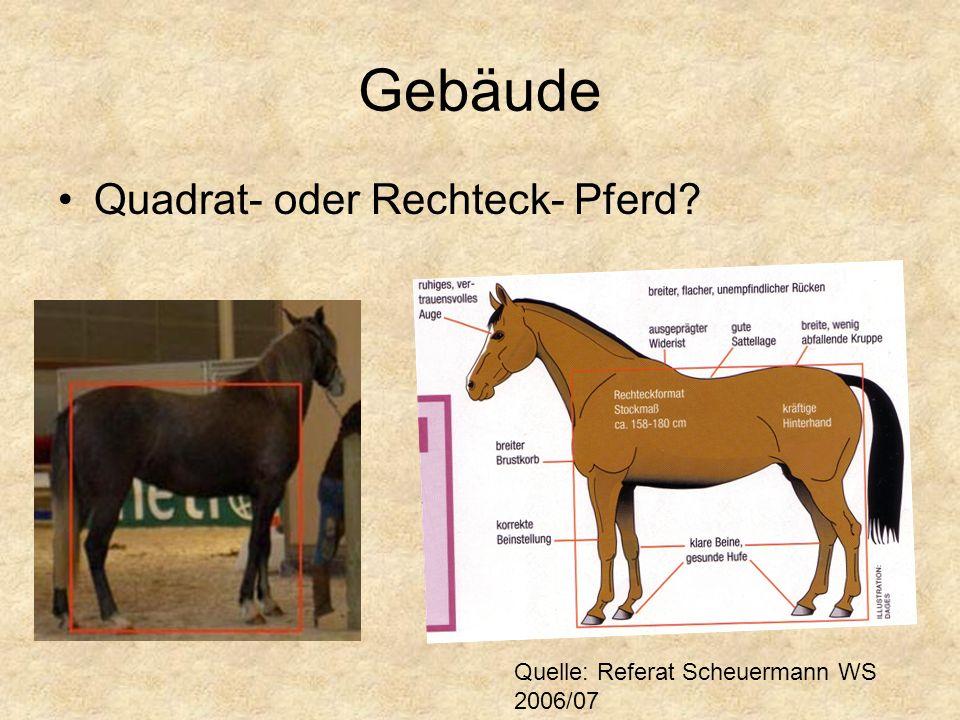 Gebäude Quadrat- oder Rechteck- Pferd