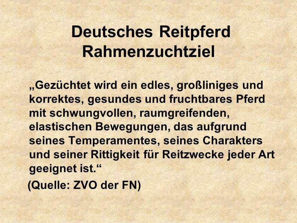 Deutsches Reitpferd Rahmenzuchtziel