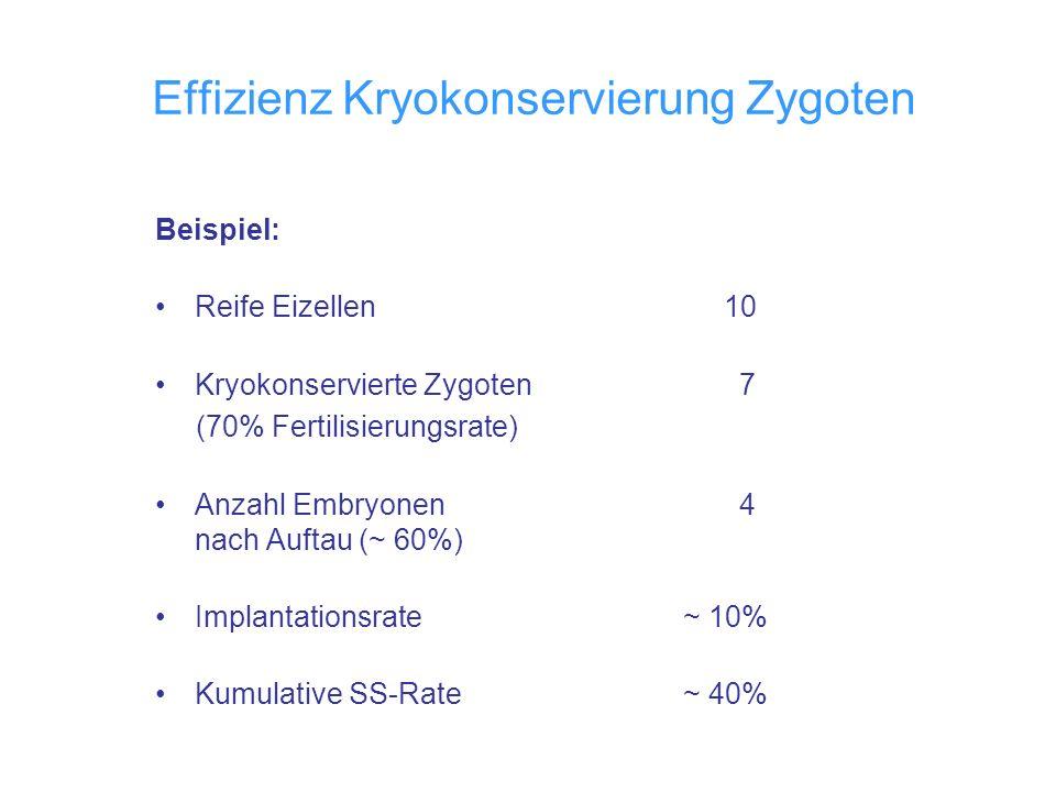 Effizienz Kryokonservierung Zygoten