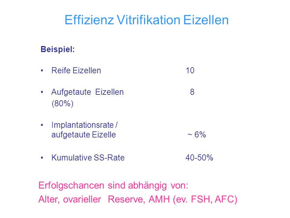 Effizienz Vitrifikation Eizellen