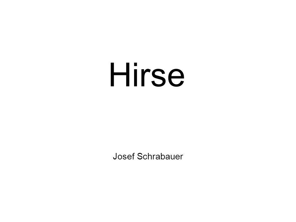 Hirse Josef Schrabauer