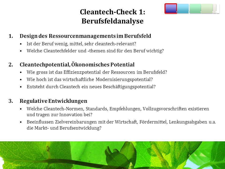 Cleantech-Check 1: Berufsfeldanalyse