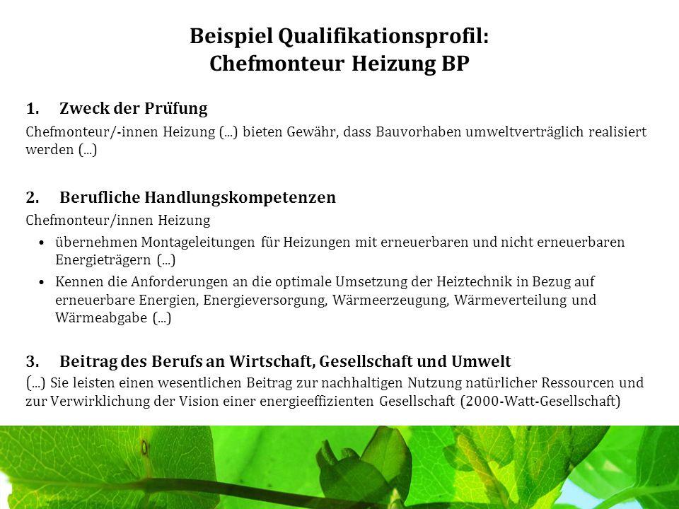 Beispiel Qualifikationsprofil: Chefmonteur Heizung BP
