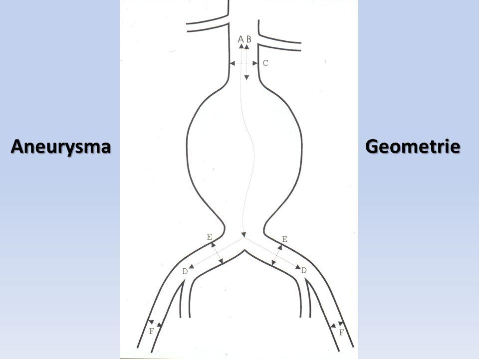 Aneurysma Geometrie