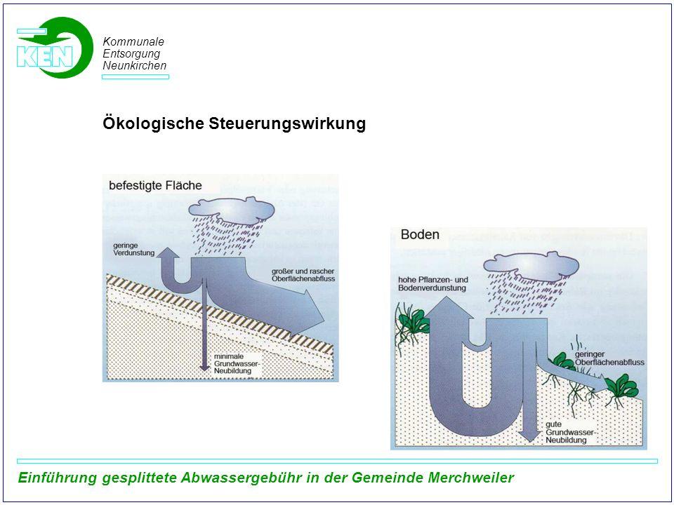 Ökologische Steuerungswirkung