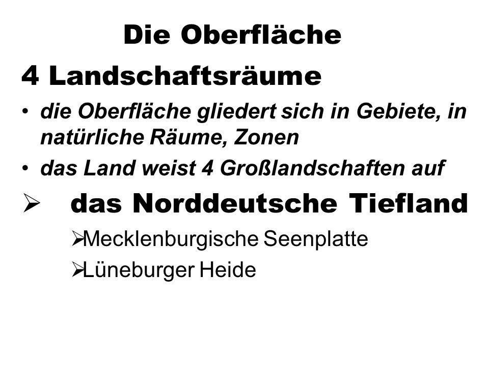 das Norddeutsche Tiefland