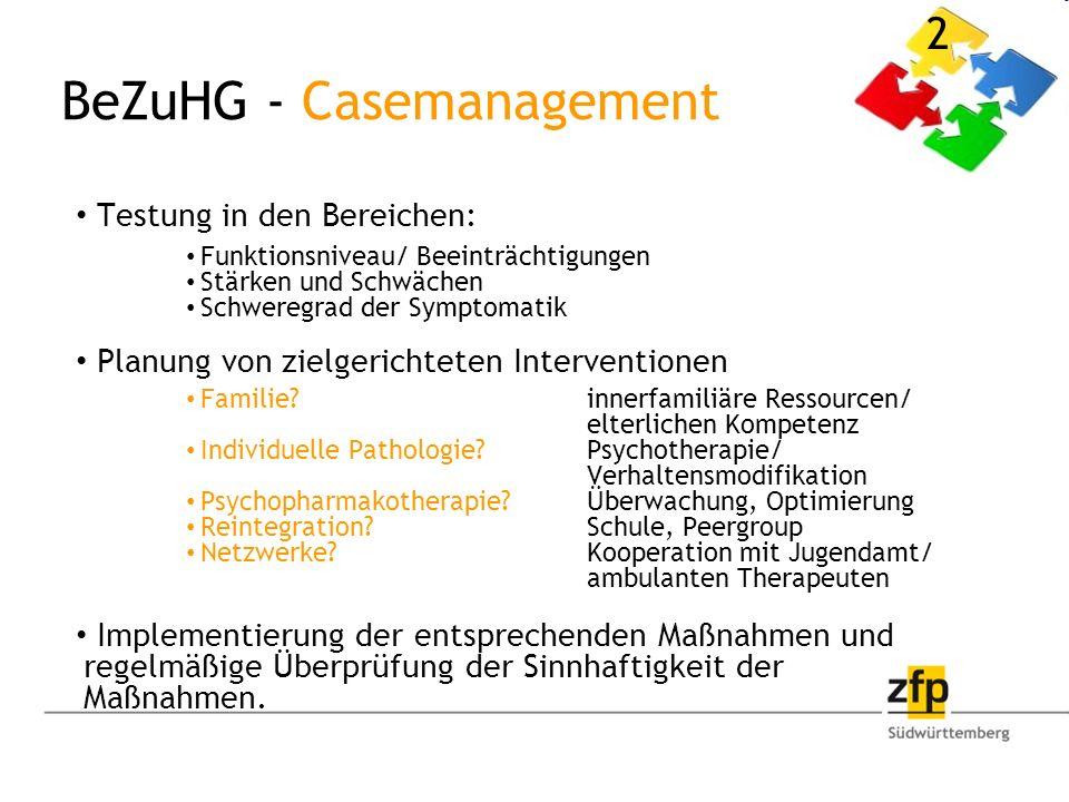 BeZuHG - Casemanagement