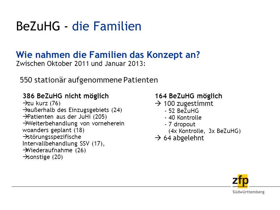 BeZuHG - die Familien Wie nahmen die Familien das Konzept an