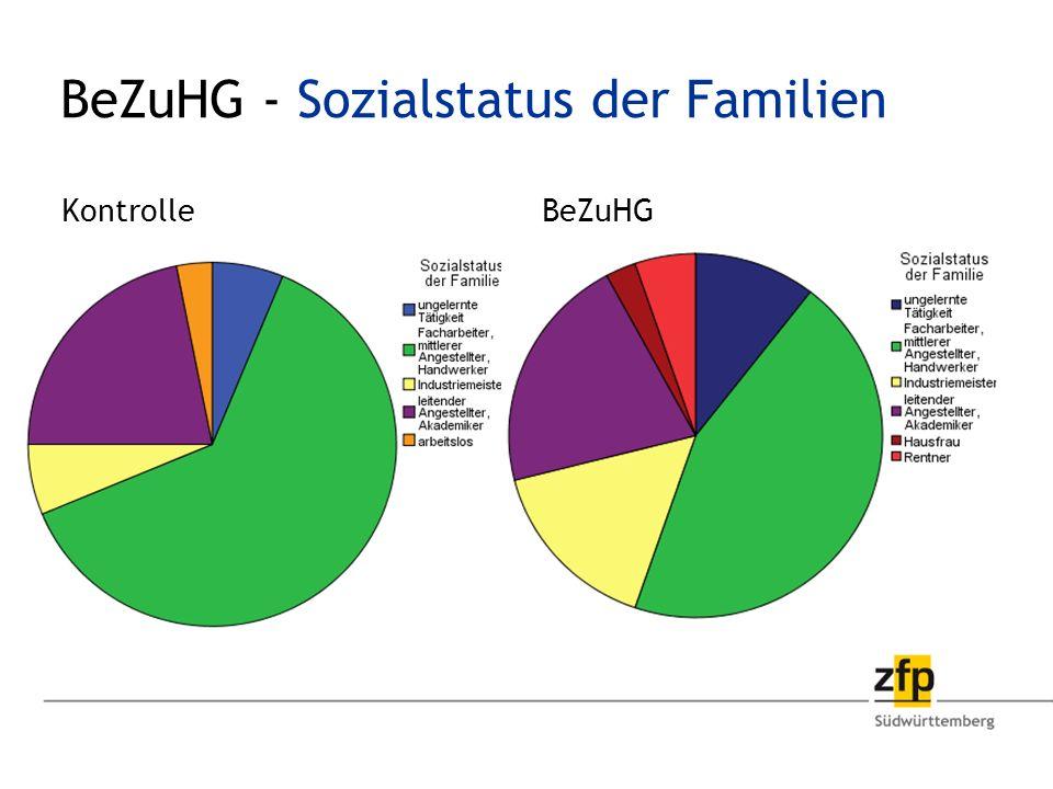 BeZuHG - Sozialstatus der Familien
