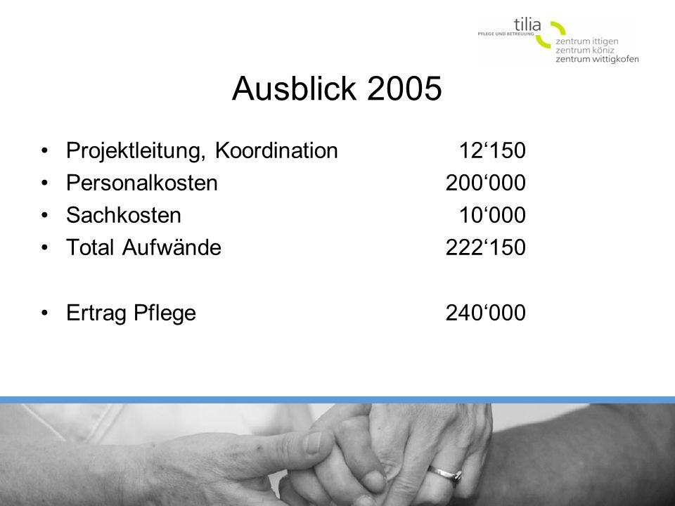 Ausblick 2005 Projektleitung, Koordination 12'150