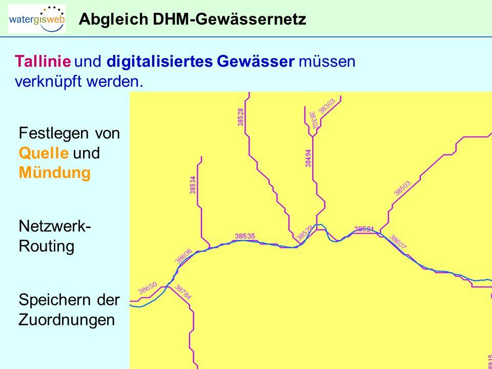 Abgleich DHM-Gewässernetz