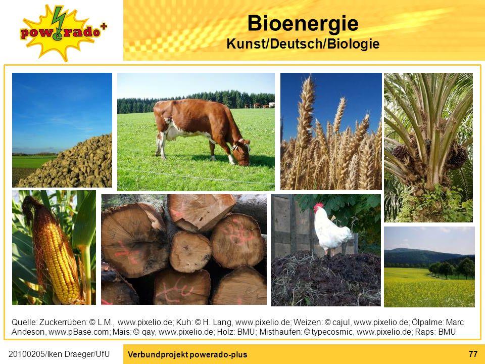 Bioenergie Kunst/Deutsch/Biologie
