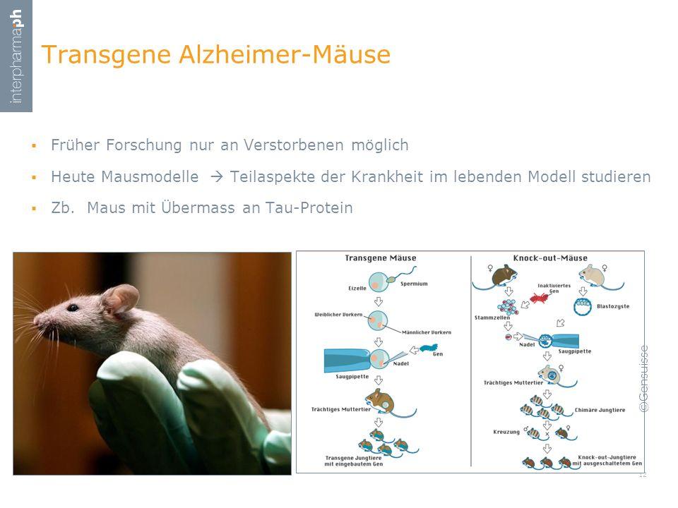 Transgene Alzheimer-Mäuse