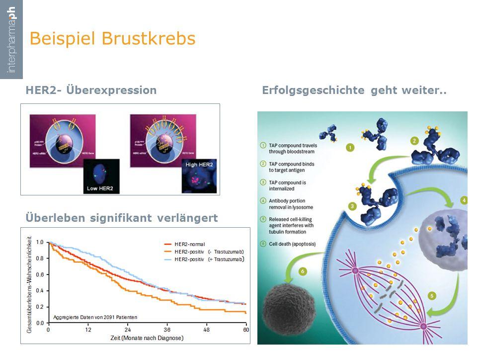 Beispiel Brustkrebs HER2- Überexpression