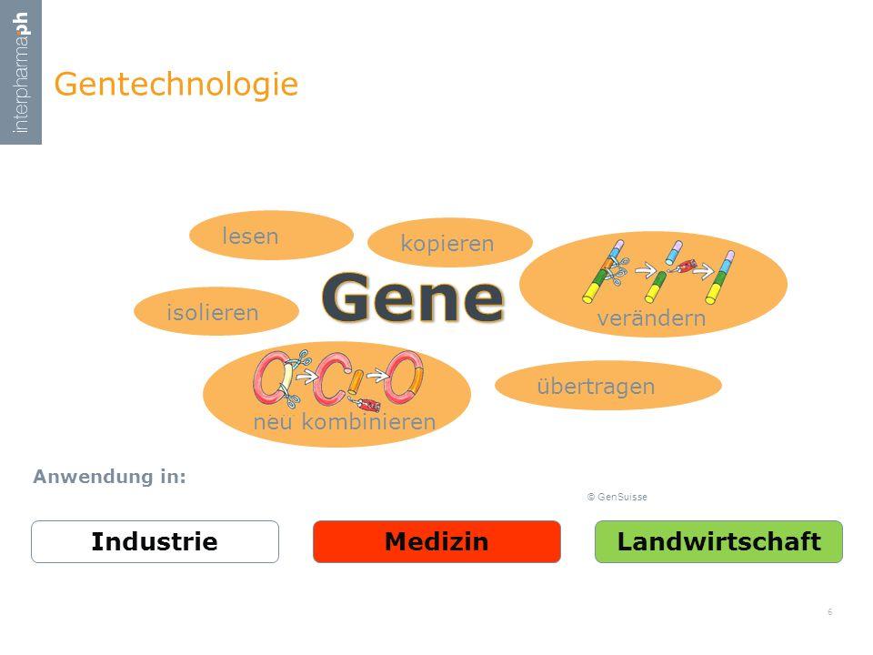 Gene Gentechnologie Industrie Medizin Landwirtschaft lesen kopieren
