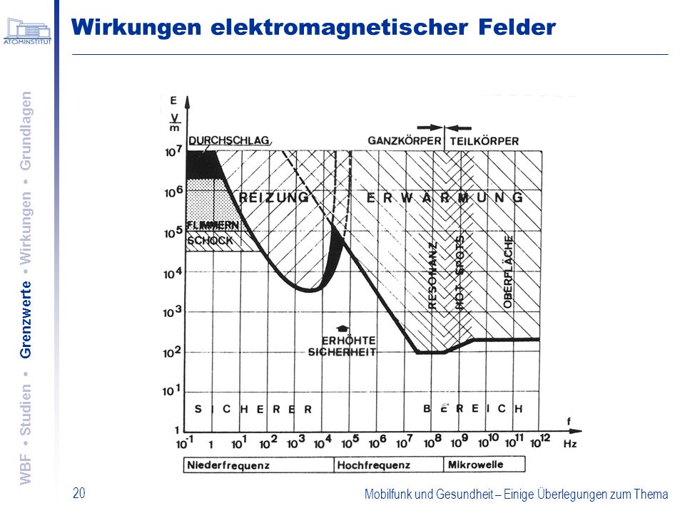 Wirkungen elektromagnetischer Felder