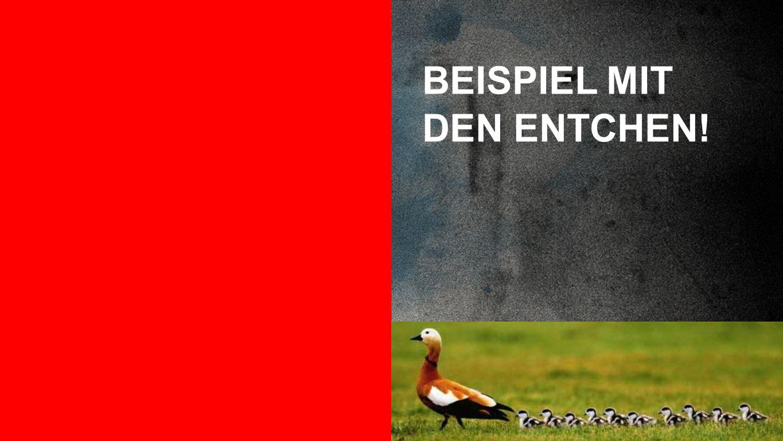 BEISPIEL MIT DEN ENTCHEN!