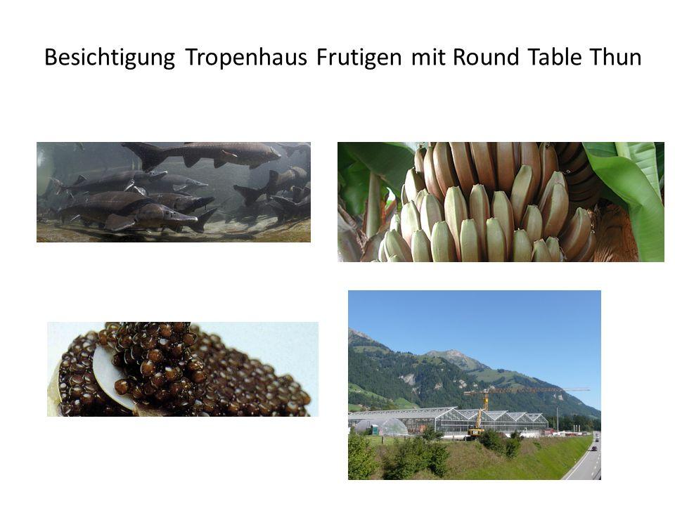 Besichtigung Tropenhaus Frutigen mit Round Table Thun