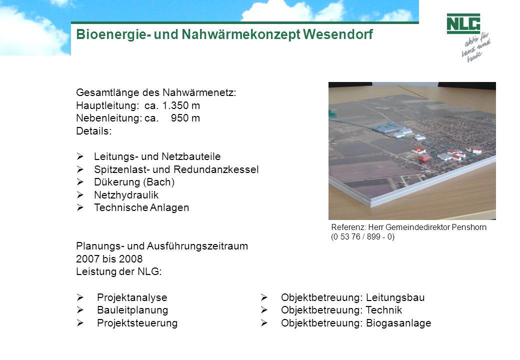 Bioenergie- und Nahwärmekonzept Wesendorf