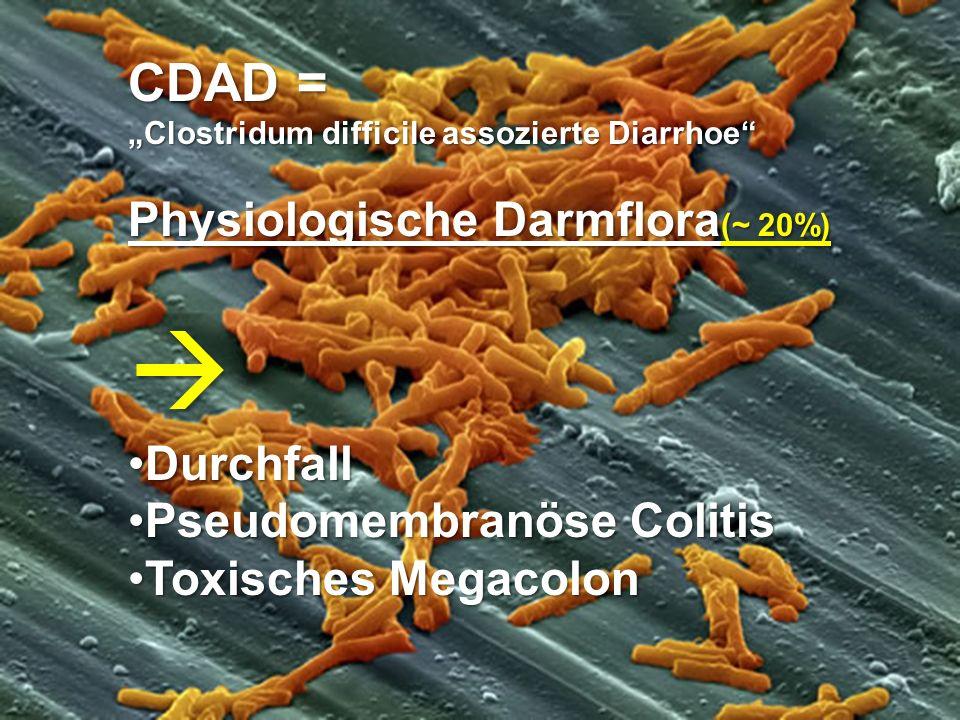 CDAD = Physiologische Darmflora(~ 20%) Durchfall