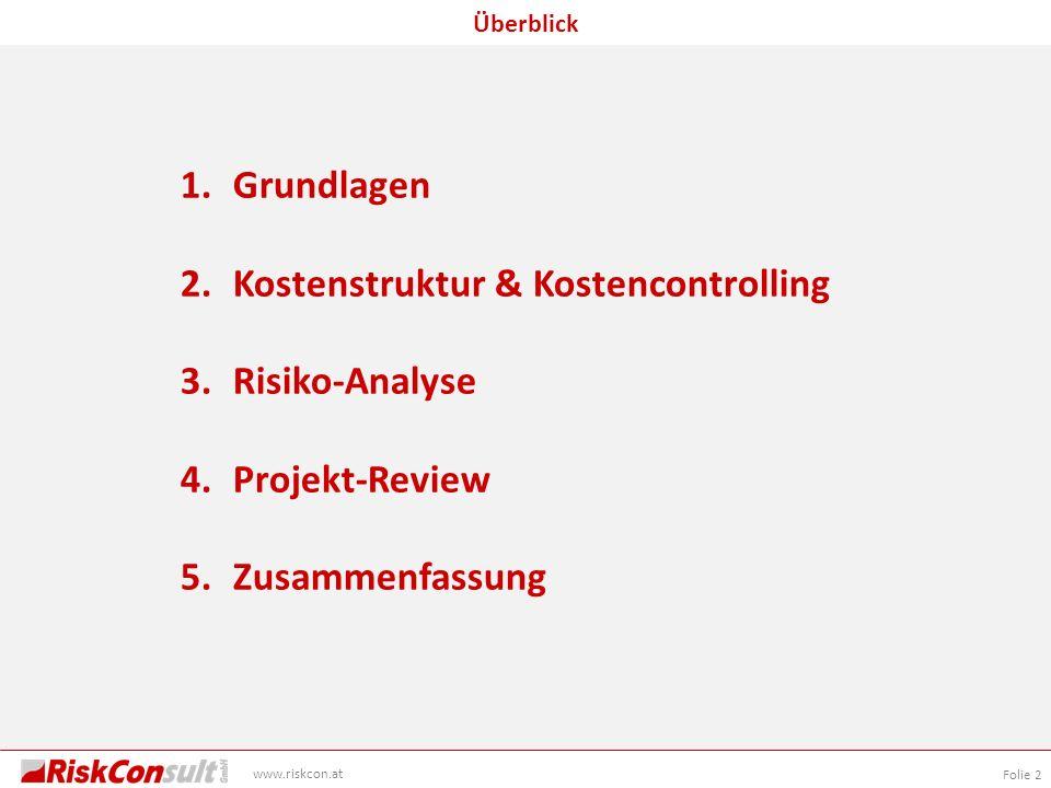 Grundlagen Kostenstruktur & Kostencontrolling Risiko-Analyse Projekt-Review Zusammenfassung