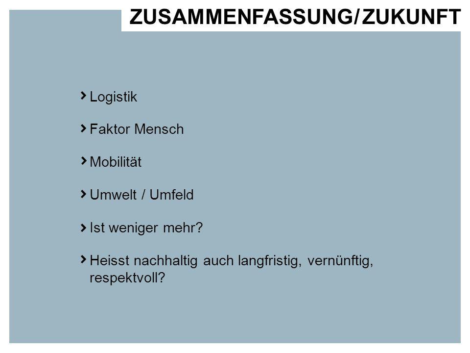 ZUSAMMENFASSUNG / ZUKUNFT