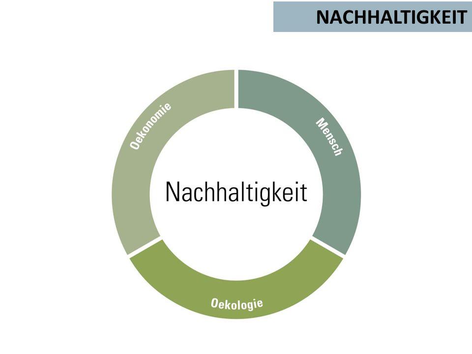 NACHHALTIGKEIT Hintergrund für Text oder Grafiken (18 x 24,4 cm)