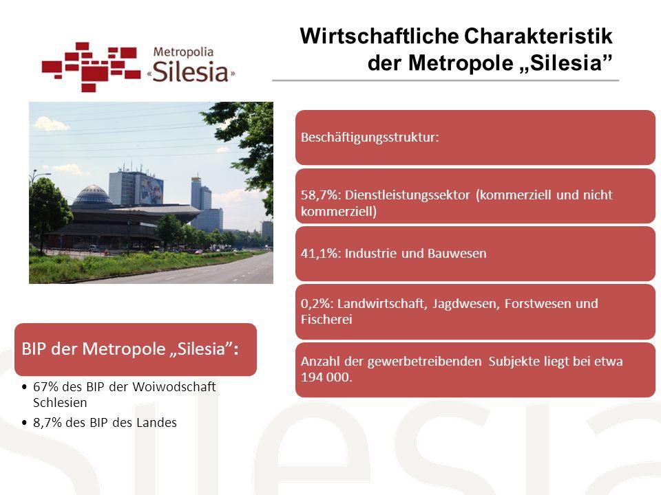 """Wirtschaftliche Charakteristik der Metropole """"Silesia"""