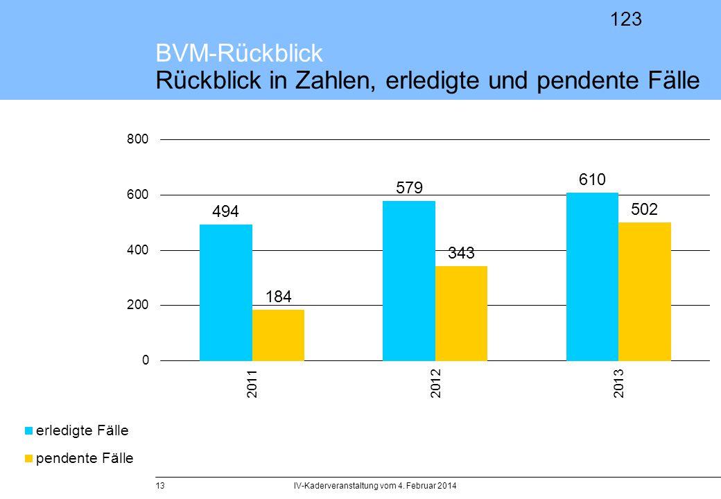 BVM-Rückblick Rückblick in Zahlen, erledigte und pendente Fälle