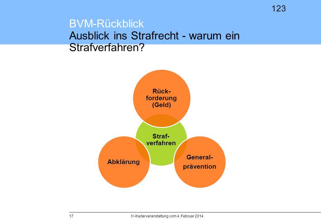 BVM-Rückblick Ausblick ins Strafrecht - warum ein Strafverfahren