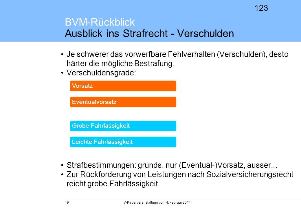 BVM-Rückblick Ausblick ins Strafrecht - Verschulden