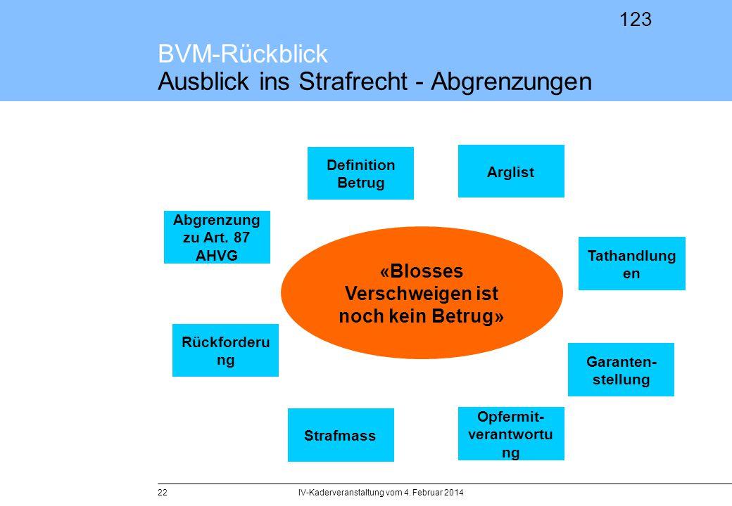 BVM-Rückblick Ausblick ins Strafrecht - Abgrenzungen
