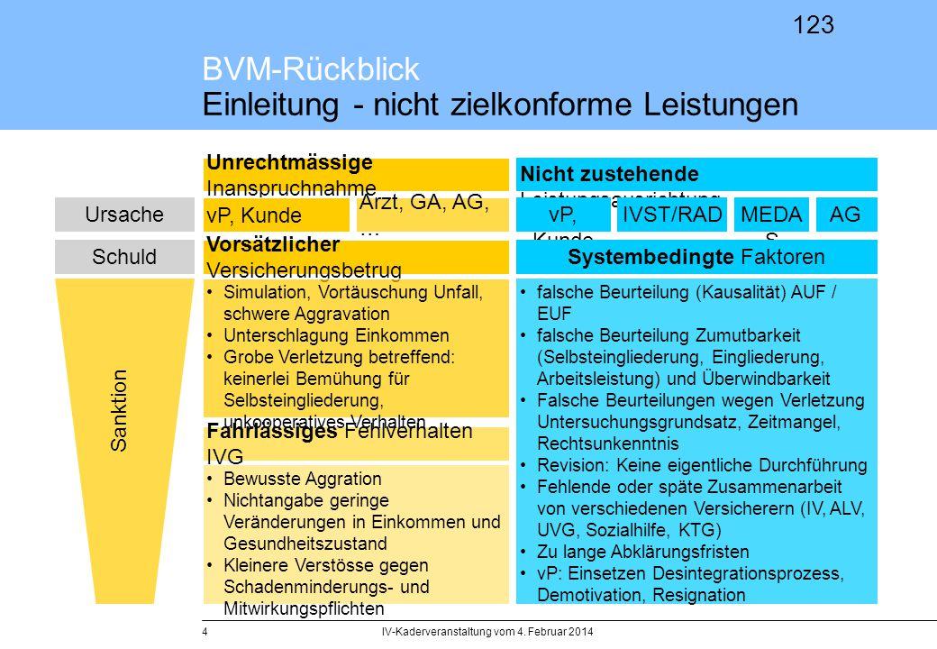 BVM-Rückblick Einleitung - nicht zielkonforme Leistungen