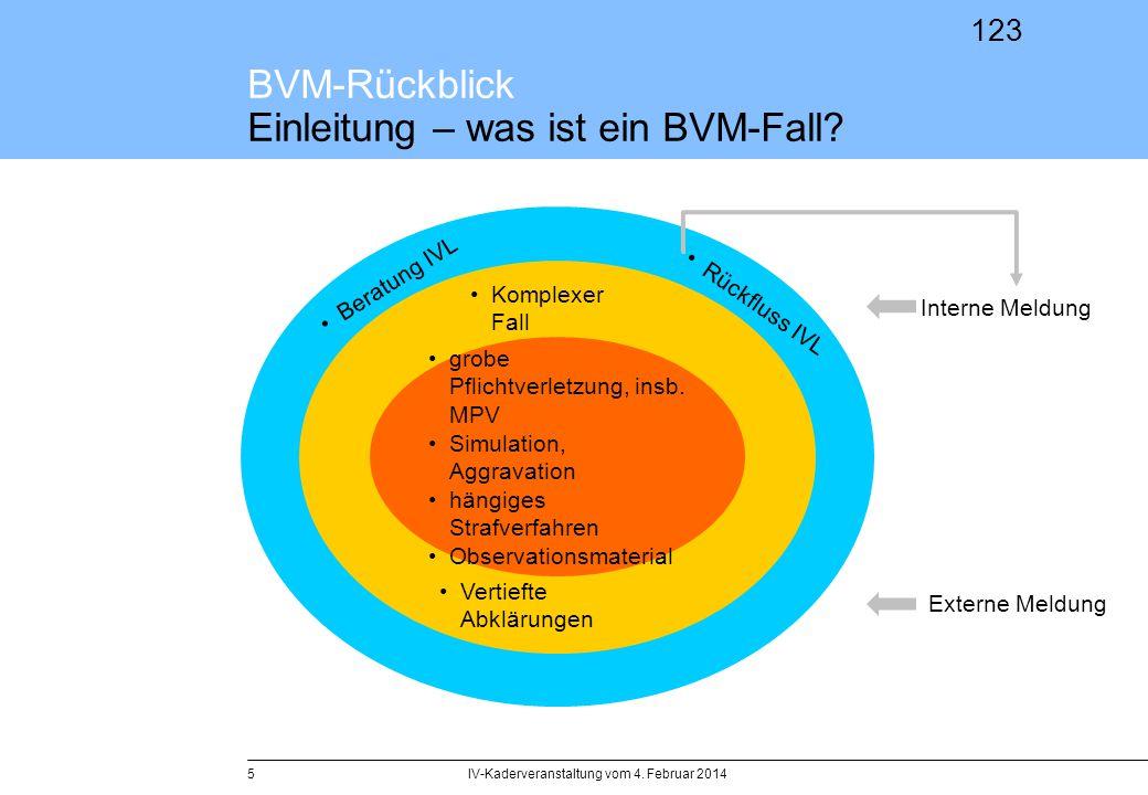 BVM-Rückblick Einleitung – was ist ein BVM-Fall