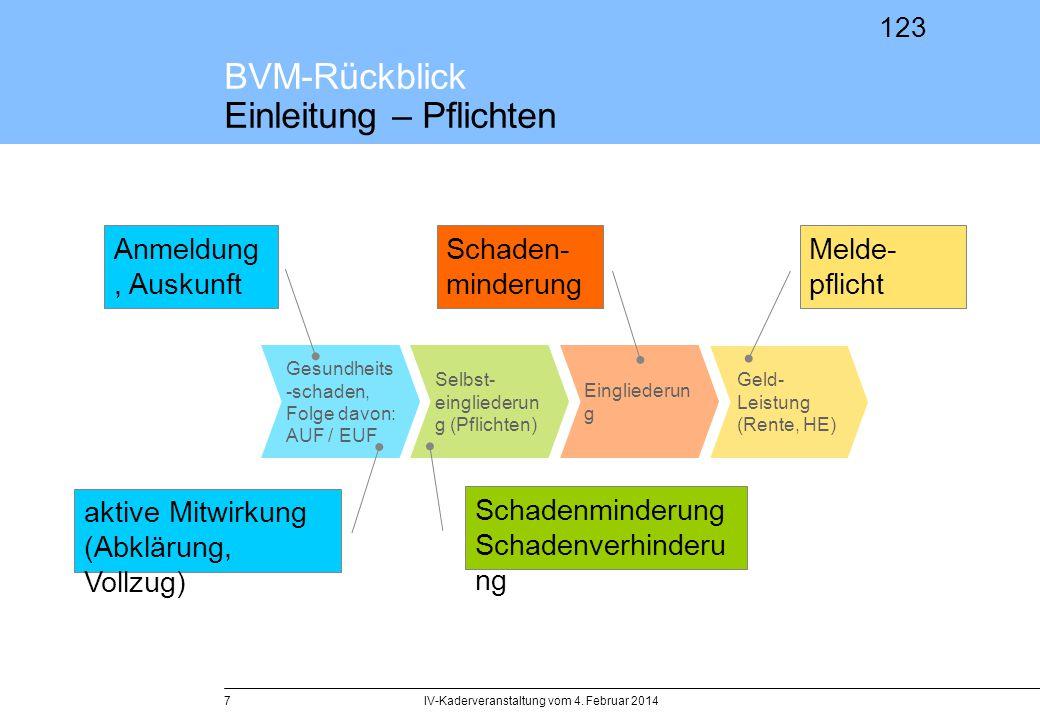 BVM-Rückblick Einleitung – Pflichten