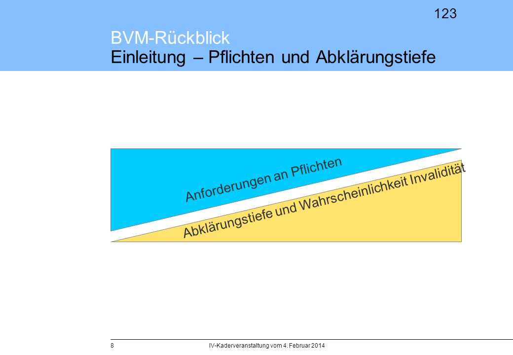 BVM-Rückblick Einleitung – Pflichten und Abklärungstiefe