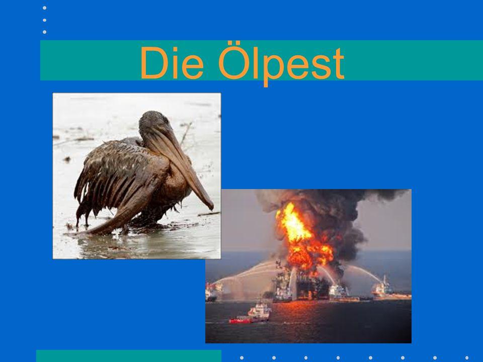Die Ölpest