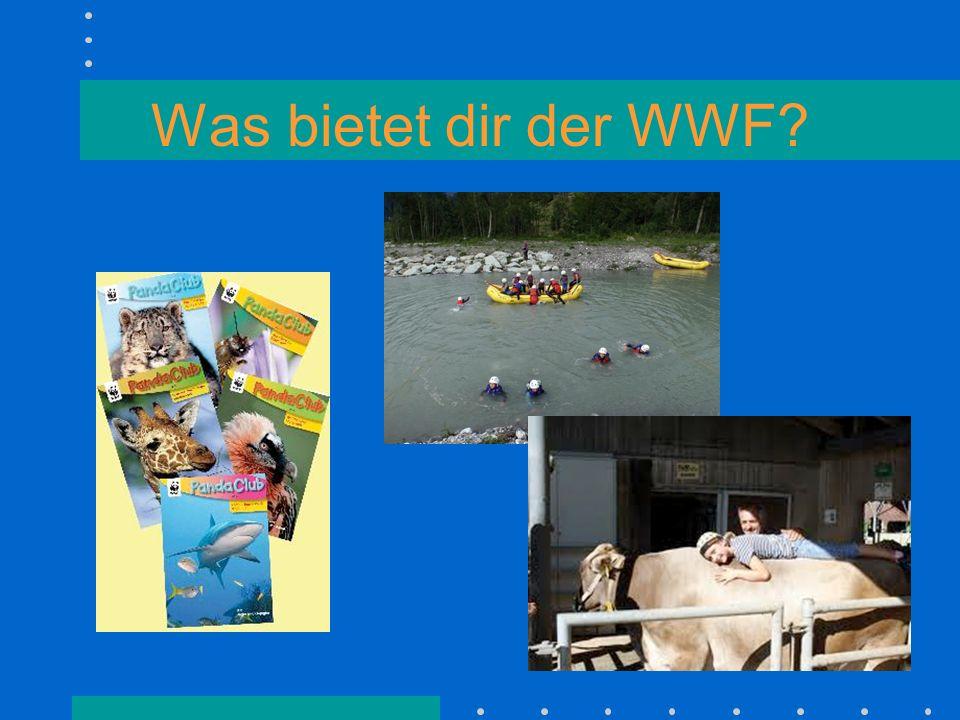 Was bietet dir der WWF
