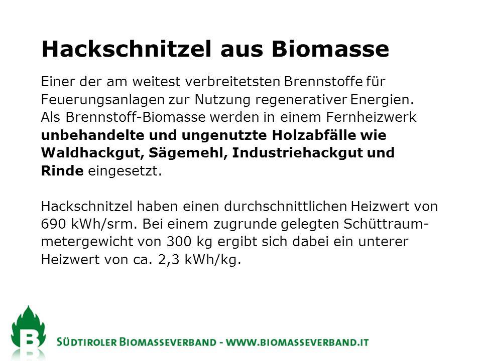 Hackschnitzel aus Biomasse