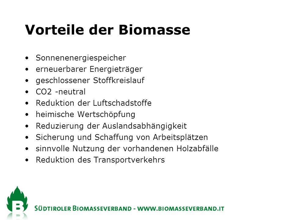 Vorteile der Biomasse Sonnenenergiespeicher erneuerbarer Energieträger