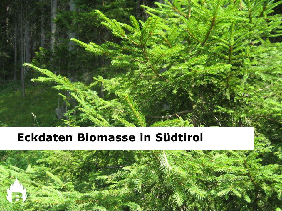 Eckdaten Biomasse in Südtirol