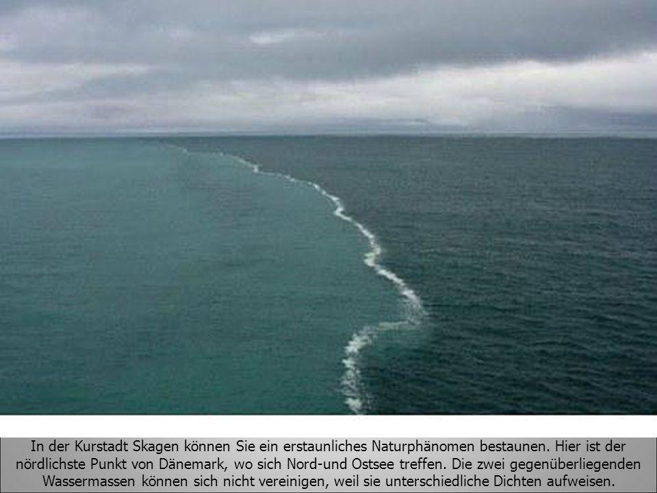 In der Kurstadt Skagen können Sie ein erstaunliches Naturphänomen bestaunen. Hier ist der nördlichste Punkt von Dänemark, wo sich Nord-und Ostsee treffen. Die zwei gegenüberliegenden Wassermassen können sich nicht vereinigen, weil sie unterschiedliche Dichten aufweisen.