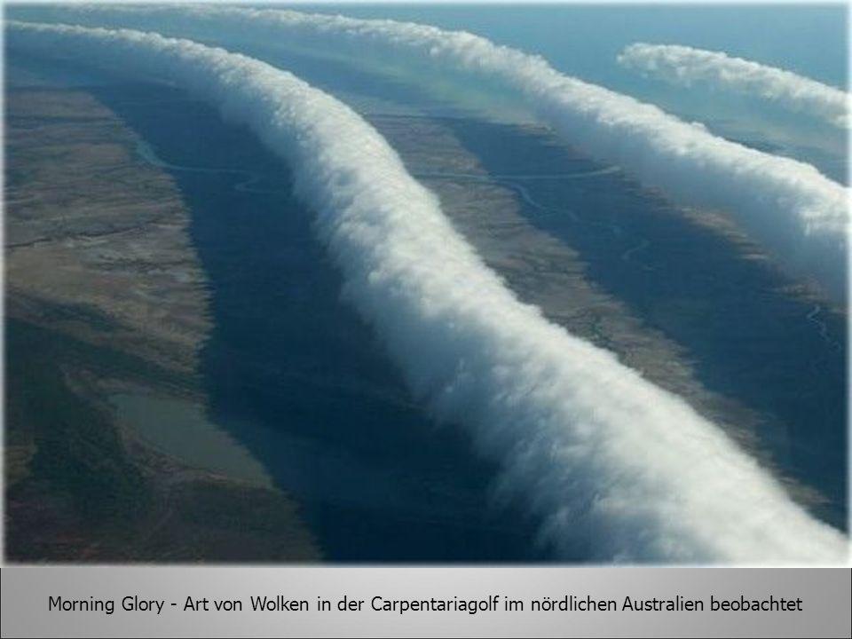 Morning Glory - Art von Wolken in der Carpentariagolf im nördlichen Australien beobachtet
