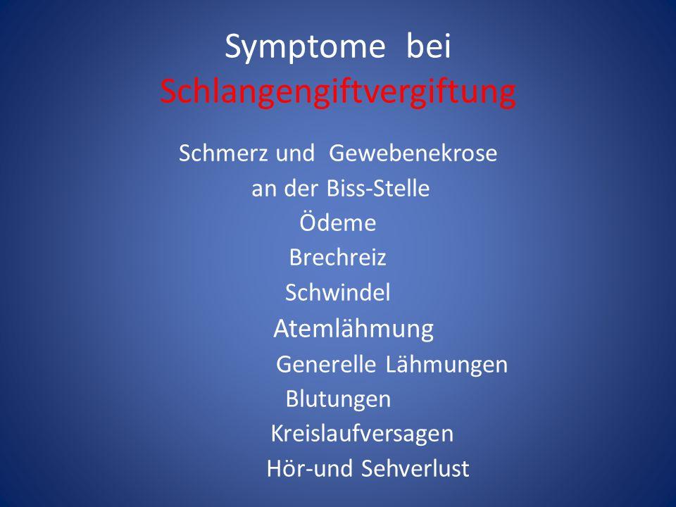 Symptome bei Schlangengiftvergiftung