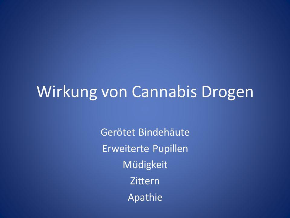 Wirkung von Cannabis Drogen