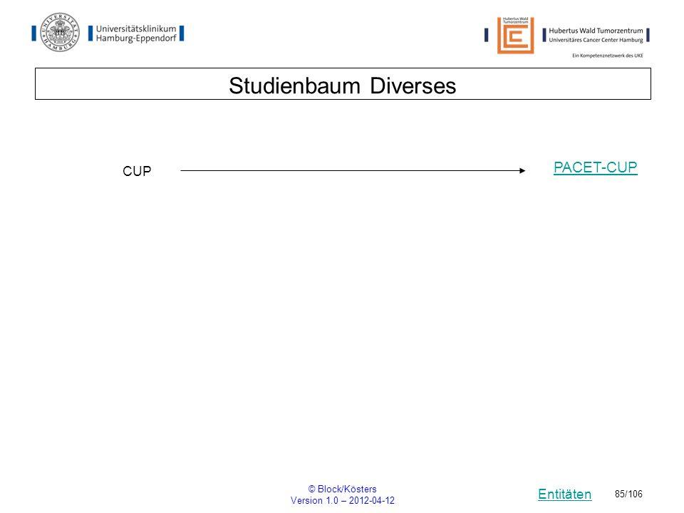 Studienbaum Diverses PACET-CUP CUP © Block/Kösters