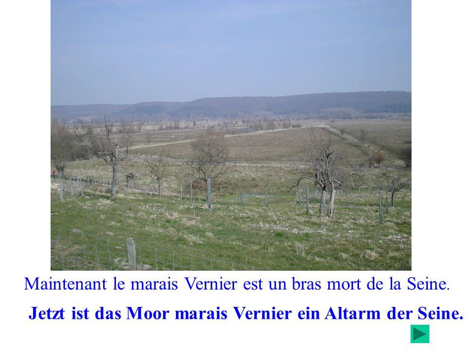 Maintenant le marais Vernier est un bras mort de la Seine.